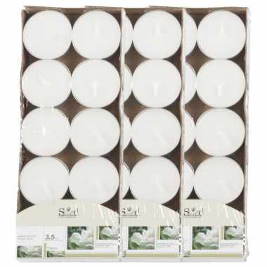 40x geurtheelichtjes jasmijn/wit 3,5 branduren