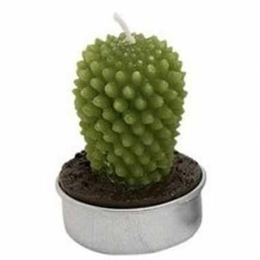 Cactus theelichtje 5 cm type 1