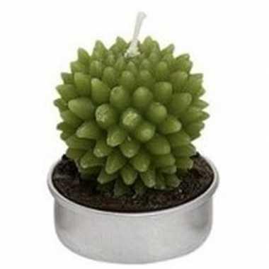 Cactus theelichtje 5 cm type 3