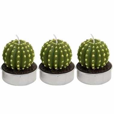 Set van 3x stuks cactus kaarsjes theelichtjes 5 cm