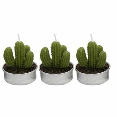 Set van 3x stuks cactus theelichtjes 5 cm vinger vorm