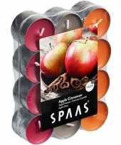 120x geurtheelichtjes apple cinnamon 4 5 branduren