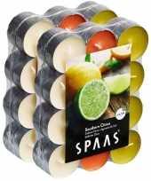 48x geurtheelichtjes southern citrus 4 5 branduren