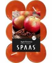 60x geurtheelichtjes apple cinnamon oranje 4 5 branduren