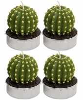 Set van 4x stuks cactus kaarsjes theelichtjes 5 cm