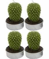 Set van 4x stuks cactus theelichtjes kaarsjes ovaal 5 cm